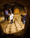 Always fun to descend into the cellar