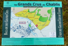This is it. All the Grand Cru Chablis in one place