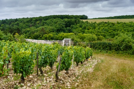 1st built in the 12th century, the historic Clos Beru