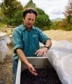 Assistant winemaker, Nate Wall, explained how they manage their fermentation process.