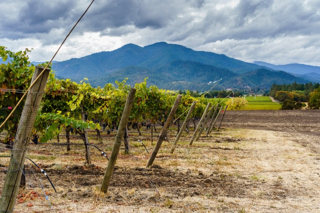 Troon Vineyard in the Applegate Valley in Oregon