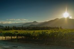 A late October afternoon at Troon Vineyard in the Applegate Valley in Oregon