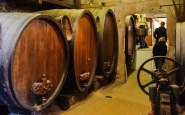 No longer the main winery, the tasting room has some of the old aging barrels used for many years