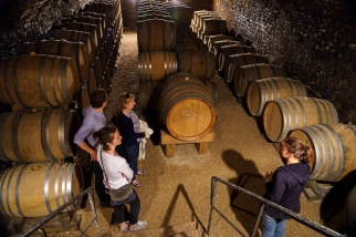 Biodynamics extends into the cellar, with no chemical interventions and operations timed by phase of the moon.