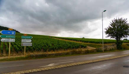 Rain during the growing season is a threat in many wine regions in France. You can see the wet road from a June downpour here in Chablis.