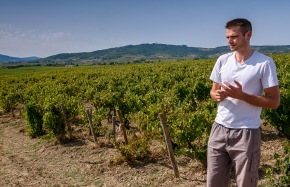 Tomas Agatensi in the vines at Domaine de la Bonne Tonne