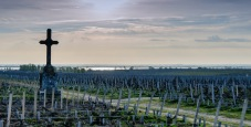 Pauillac vineyards look over the Gironde Estuary in Bordeaux