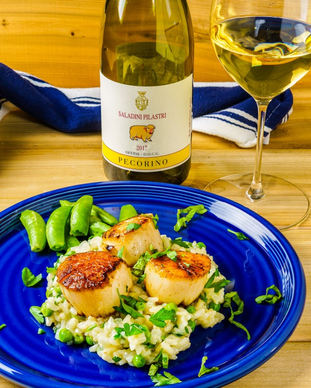 Seared scallops with spring pea risotto paired with Pecorino white wine from Saladini Pilastri