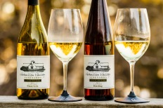 Vermilion Valley Vineyards Pinot Gris and Riesling
