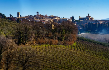 Beautiful view over the vineyard to the village of Montefalco. In February, the wines are still dormant.
