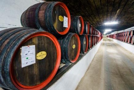 Entire wineries build underground