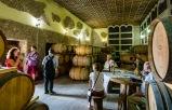 Traditional cellars at Asconi