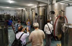 Atu is an example of the growing segment of small wineries in the country