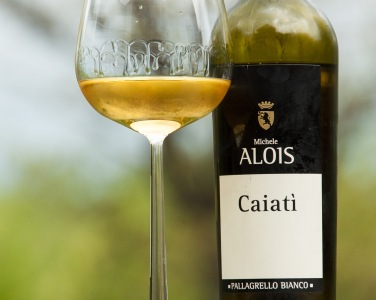 Caiati is made from the Pallagrello Bianco grape