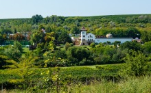Chateau Purcari is located in the beautiful countryside, vineyards are nearby