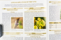 There are sections on viticulture and winemaking